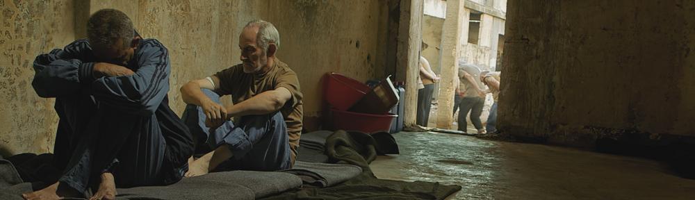 Aardvark Film Emporium
